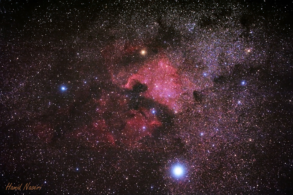Northern Cygnus Nebulae